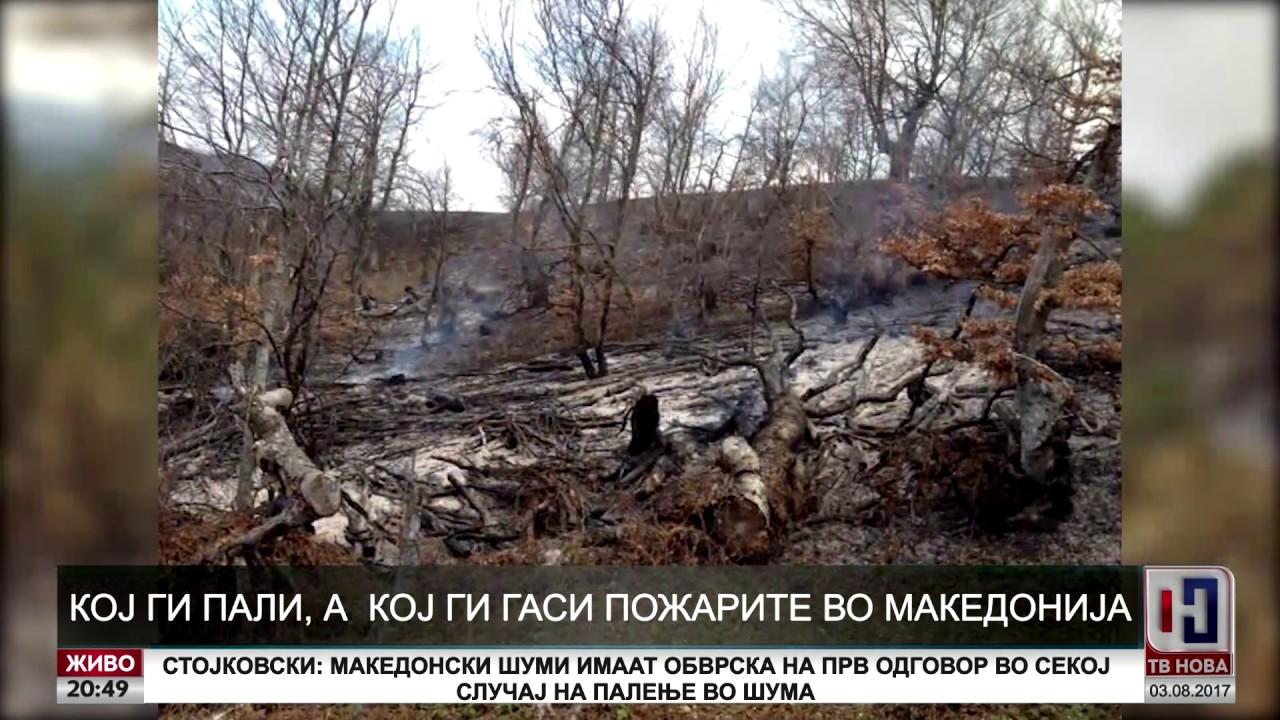 Аргументи: Кој ги пали, а кој ги гаси пожарите во Македонија?