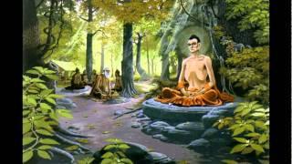 DVD Phim Hoạt Hình: Sự Tích Đức Phật 2 (5/7)