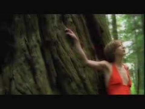 Beth Orton: Concrete Sky (Album: Daybreaker 2002, pro ...