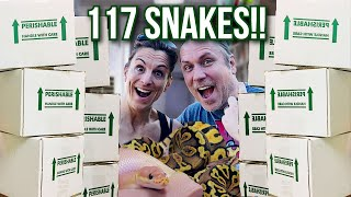 UNBOXING 117 SNAKES!! | BRIAN BARCZYK by Brian Barczyk