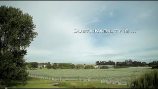 What is sustainability? New Zealand Wine