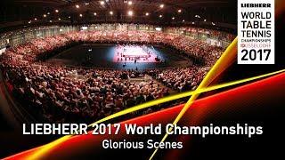 2017 World Championships I Glorious Scenes