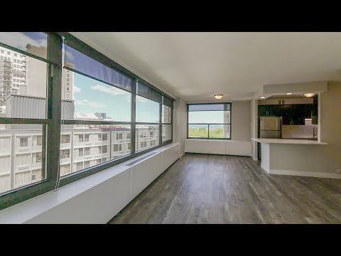 A very spacious and livable 1-bedroom at the full-amenity 1130 South Michigan