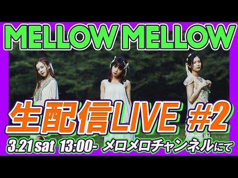 , title : 'MELLOW MELLOW 生配信ライブ!'