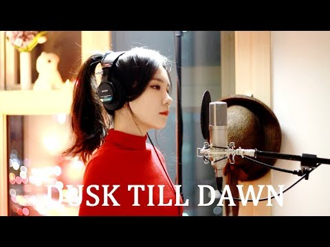ZAYN - Dusk Till Dawn ft. Sia ( cover by J.Fla ) (видео)