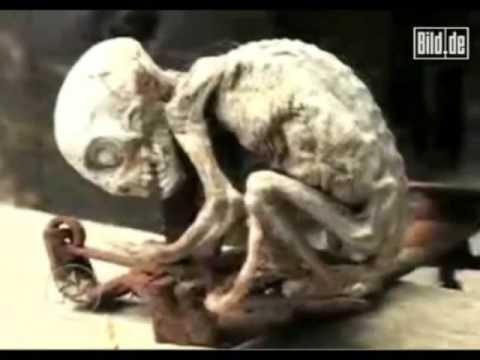 True Alien found
