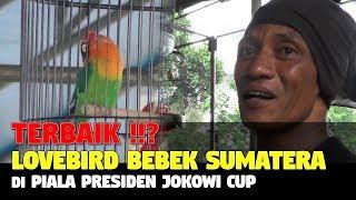 Video TERBAIK !! LB BEBEK SUMATERA DI PIALA PRESIDEN JOKOWI CUP MP3, 3GP, MP4, WEBM, AVI, FLV Juni 2018