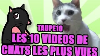 Video TOP 10 des vidéos de Chats les plus vues de tous les temps ! MP3, 3GP, MP4, WEBM, AVI, FLV Juni 2017