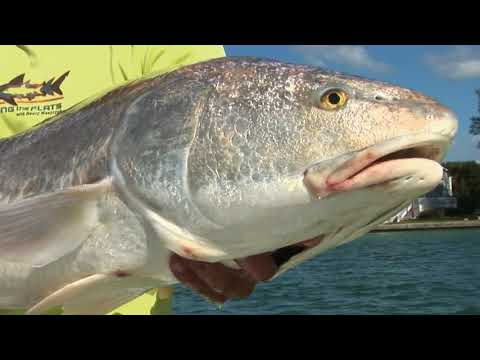 Fishing The Flats 2014 episode 13
