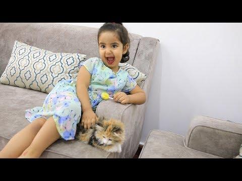 فزعة علاوي لـ ليلى // عماد اخذ قطوة ليلى الجديده .!!