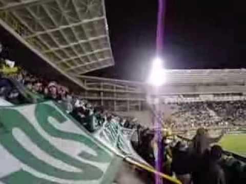 Al campeón, yo lo llevo en el corazón - Los del Sur - Atlético Nacional
