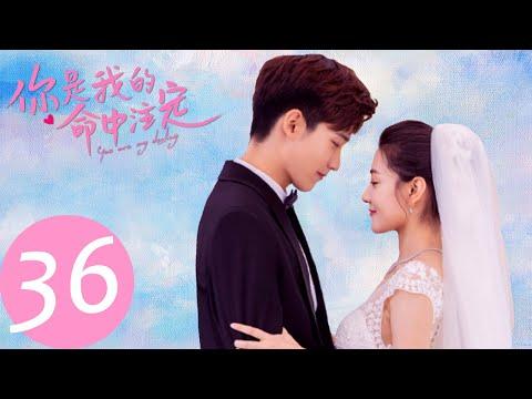 ENG SUB 【你是我的命中注定 You Are My Destiny】END EP36 | 嘉欣析翊复合举办盛大婚礼