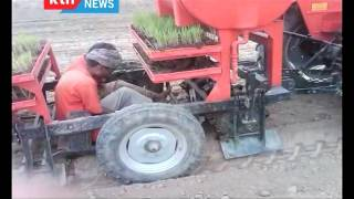 The Chamwada Report: The State of rice farming in Kenya; Ahero and West Kano Irrigation Schemes 10/1