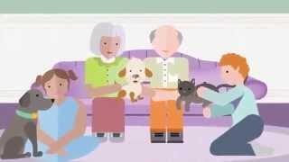 Animali da compagnia e buona salute
