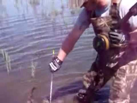 Bowfishing in Utah
