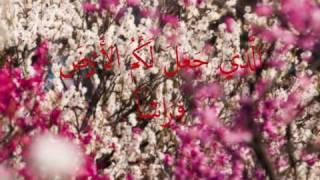 Video shiekh muammar za - surah ' AL- BAQARAH ' verse 20 - 21 MP3, 3GP, MP4, WEBM, AVI, FLV Juli 2018