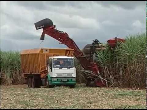 CNA EM CAMPO: CNA traça estratégias para adequar a remuneração de produtores de cana