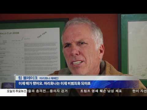 마리화나 합법화, 재배인들도 찬반 10.27.16 KBS America News