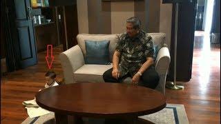 """Video Cucu SBY Melakukan Hal Aneh  Yang Membuat SBY """"Terkejut"""" - LIHAT INI MP3, 3GP, MP4, WEBM, AVI, FLV Oktober 2017"""