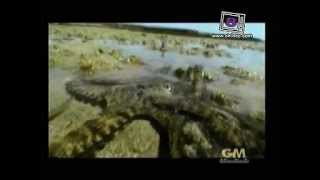 Tong Lok Kwang 19 March 2013 - Thai Documentary