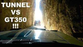 INSANE Tunnel Vs GT350 !!! by Vehicle Virgins