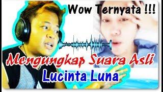 Video Terbongkar !!! Mengungkap Suara Lucinta Luna Dan hasilnya ternyata... MP3, 3GP, MP4, WEBM, AVI, FLV Juni 2019