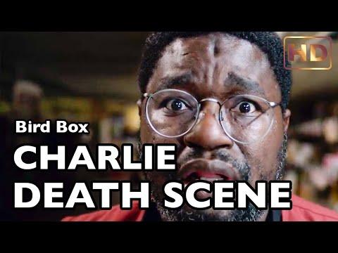 CHARLIE DEATH SCENE - Bird Box