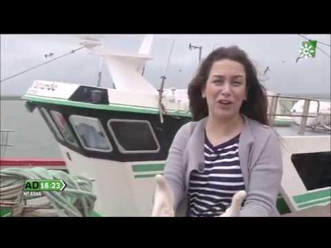 Curso online#marinero+islacristina#