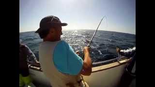 Video Pescaria de pargos em Vila Nova de Milfontes (JIG) MP3, 3GP, MP4, WEBM, AVI, FLV Desember 2017