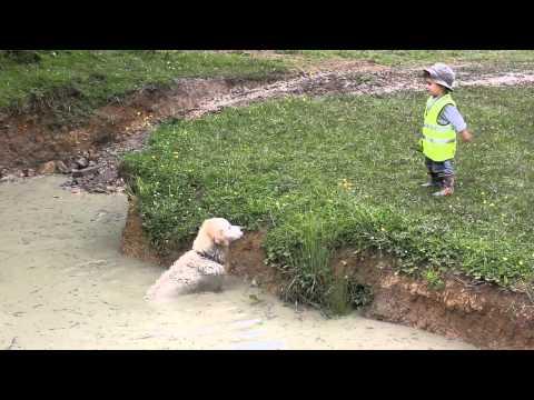 Boy Beats dog in Barking Contest
