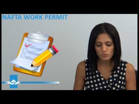 NAFTA Work Permit for Professionals Video
