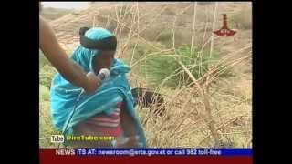Ethiopia: Afar Regional State Is Develop Big Water Project