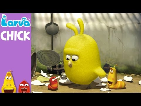 [Official] Chick - Mini Series from Animation LARVA (видео)