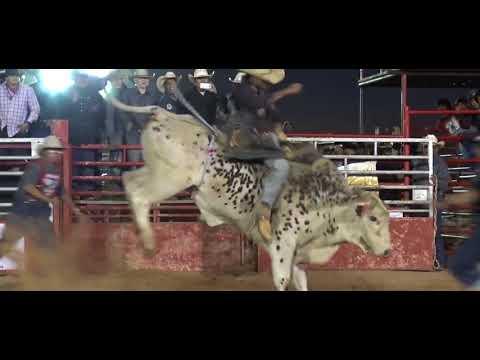 Video Navajo Bull Riding download in MP3, 3GP, MP4, WEBM, AVI, FLV January 2017