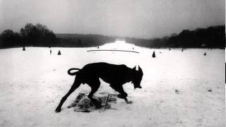 <b>Will Oldham</b>  All These Vicious Dogs
