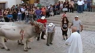Vigilia di San Antonio 2016