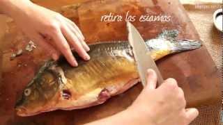 Pescado en crema de champiñones