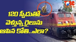 A monkey has stopped two trains for nearly 40 minutes. Watch this video for an interesting story...Ram Nath Kovind Is New President Of India - https://youtu.be/rvSTgpb8sHoShocker : These Hyd Beggars Daily Income Is 1 Cr - https://youtu.be/6A7Z5XEyBlUJawan Shoots Army Major For Silly Reason - https://youtu.be/pNFXgTpJ_K4Separate Flag For Karnataka State, But Why ? - https://youtu.be/hUFdodG4mh4
