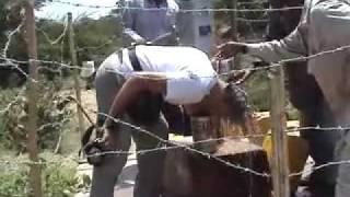 Gocce Nel Mare-onlus Inaugurazione Del Pozzo Di Bulgi Somali Region Etiopia 2007