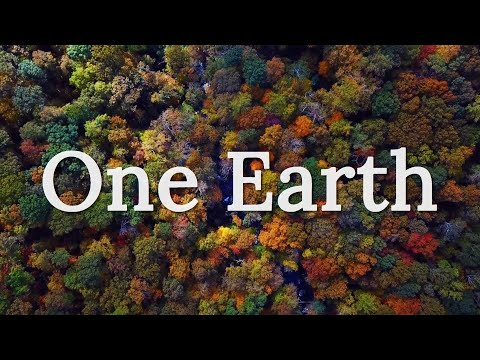 One Earth – a short film