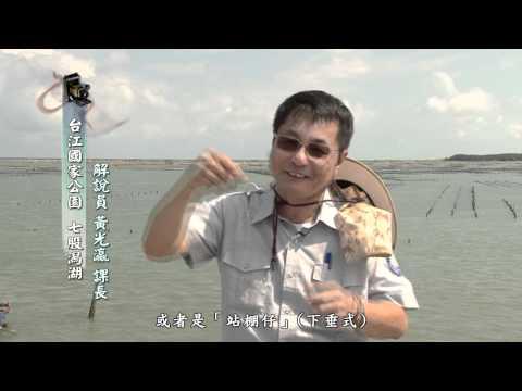 [行動解說員]台江國家公園- 七股潟湖