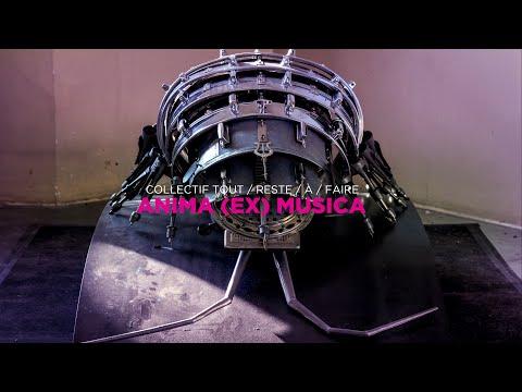 Anima (Ex) Musica