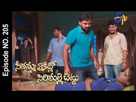 Seethamma-Vakitlo-Sirimalle-Chettu--2nd-May-2016-–-Full-Episode-No-205