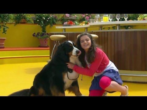 TV-Aufzeichnung vom 5. Juni 2016: Sissi war mal wieder zu Gast in einer großen Fernsehsendung. Diesmal bei Stefan Mross in