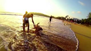 Mirissa Sri Lanka  city photo : Sri Lankan Beaches: Mirissa Bay [GoPro HD]