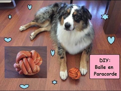 D.I.Y:  balle pour chien en paracorde