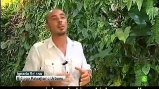 Paisajismo Urbano TV interview - Vertical gardens and green walls system