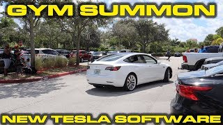 Gym freaks out over Summoning Tesla Model 3 in crowded parking lot - New V10 Software Updates by DragTimes