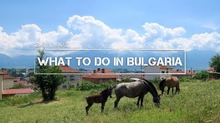Razlog Bulgaria  city photos gallery : What To Do In Razlog & Bansko | Bulgaria ep03