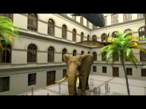 Jaké bude nové Národní muzeum?